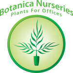 Botanica Nurseries - Office Plants, Interior Landscaping, Tropical Plants, Live & Artificial Plant Displays